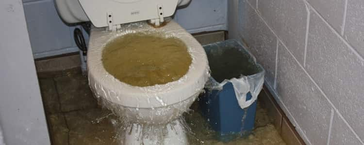 Toilet From Overflowing Service